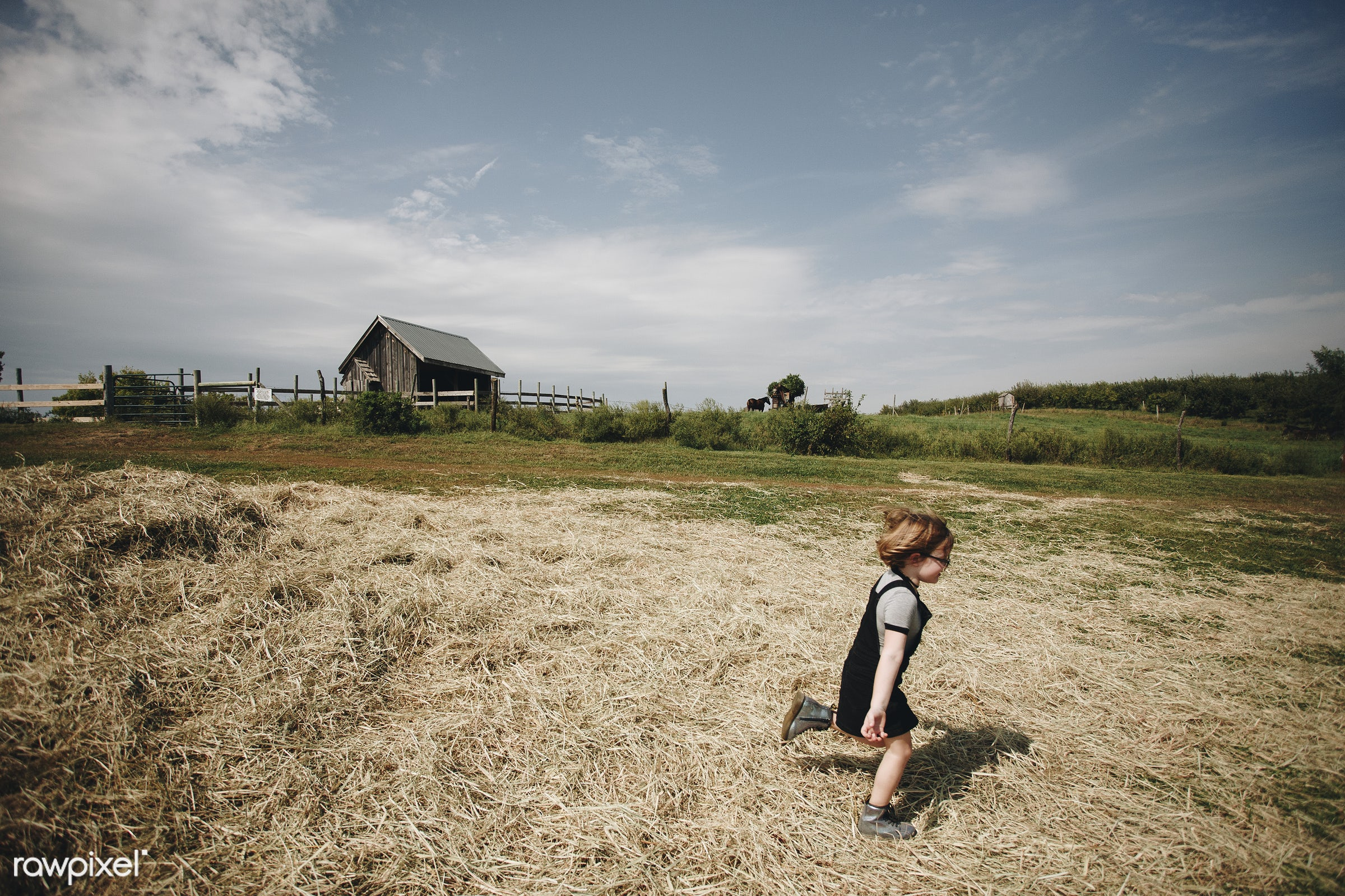 Little girl playing in a farm - alone, america, american, canada, canadian, cheerful, child, countryside, daughter, european...