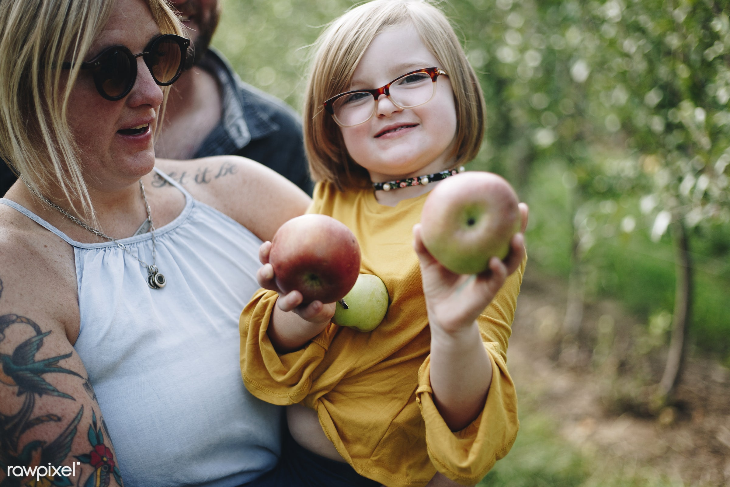 Little girl holding some apples - child, america, american, apple, apples, canada, canadian, cheerful, countryside, dad,...