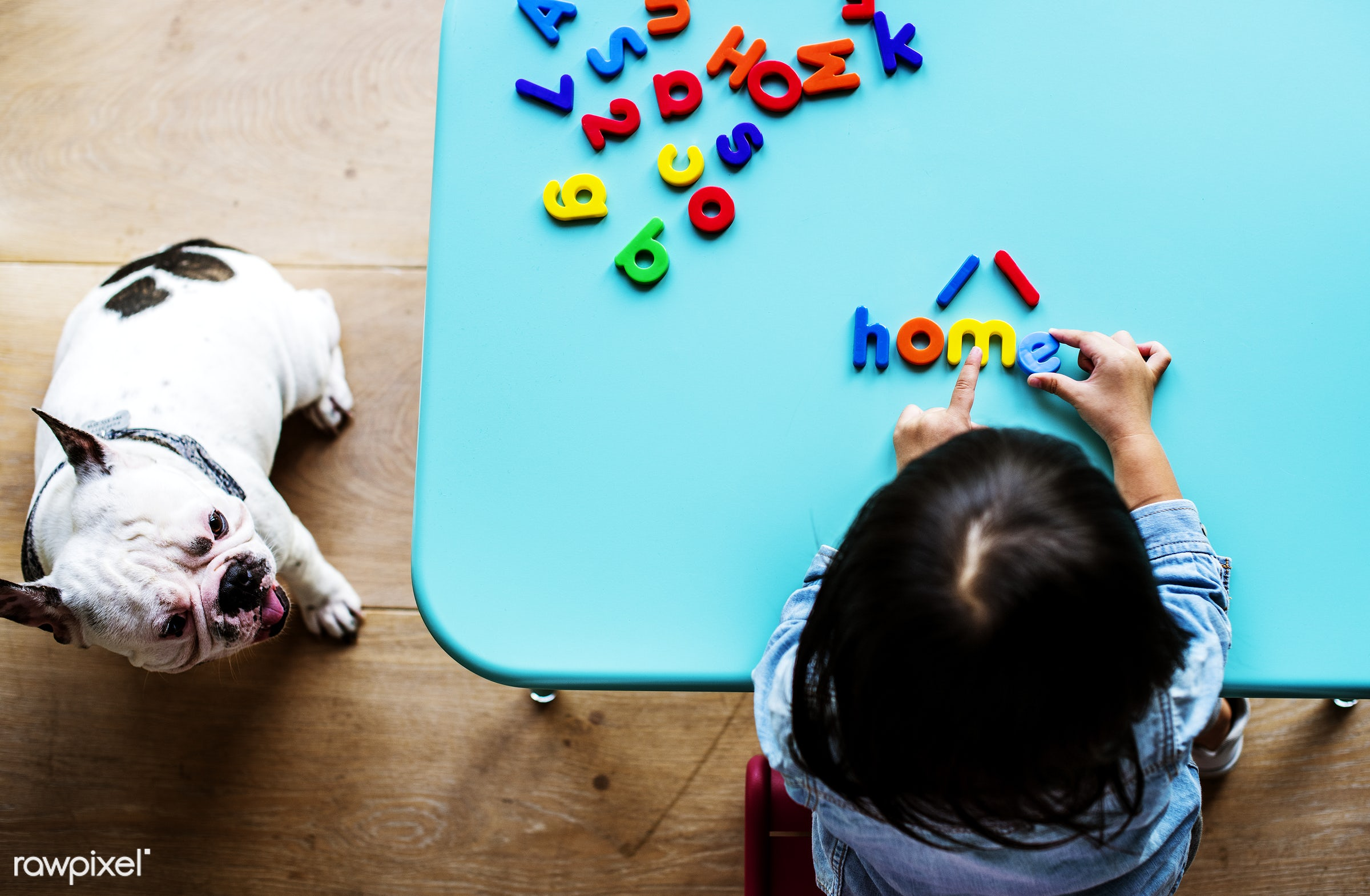 Kid with toy - word, dog, home, kid, pet, singapore, girl, childhood, activity, alone, alphabets, animal, apartment, asia,...