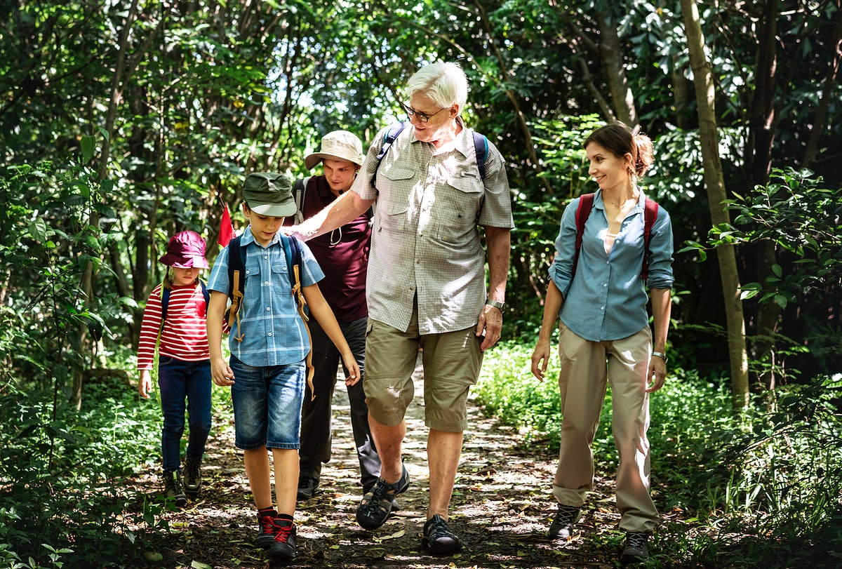 Family hiking in a forest