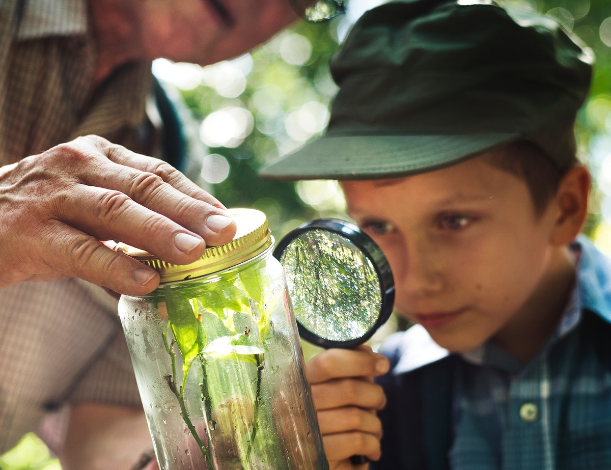 Boy examining a plant with a magnifying glass