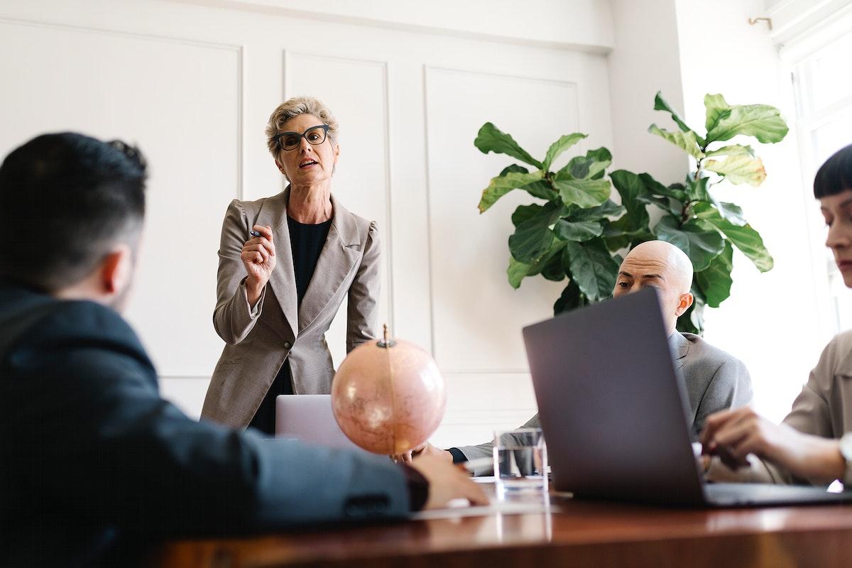 Businesswoman explaining a business plan to team