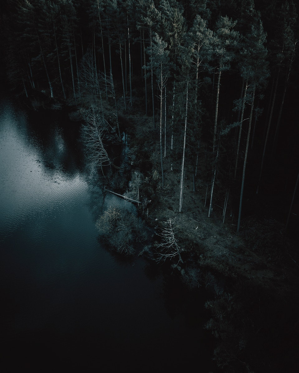 Aerial view of a dark forest in Nuremberg, Germany
