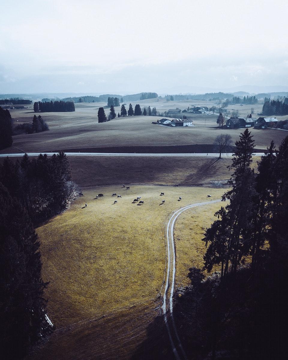 View of fields in Wald, Germany