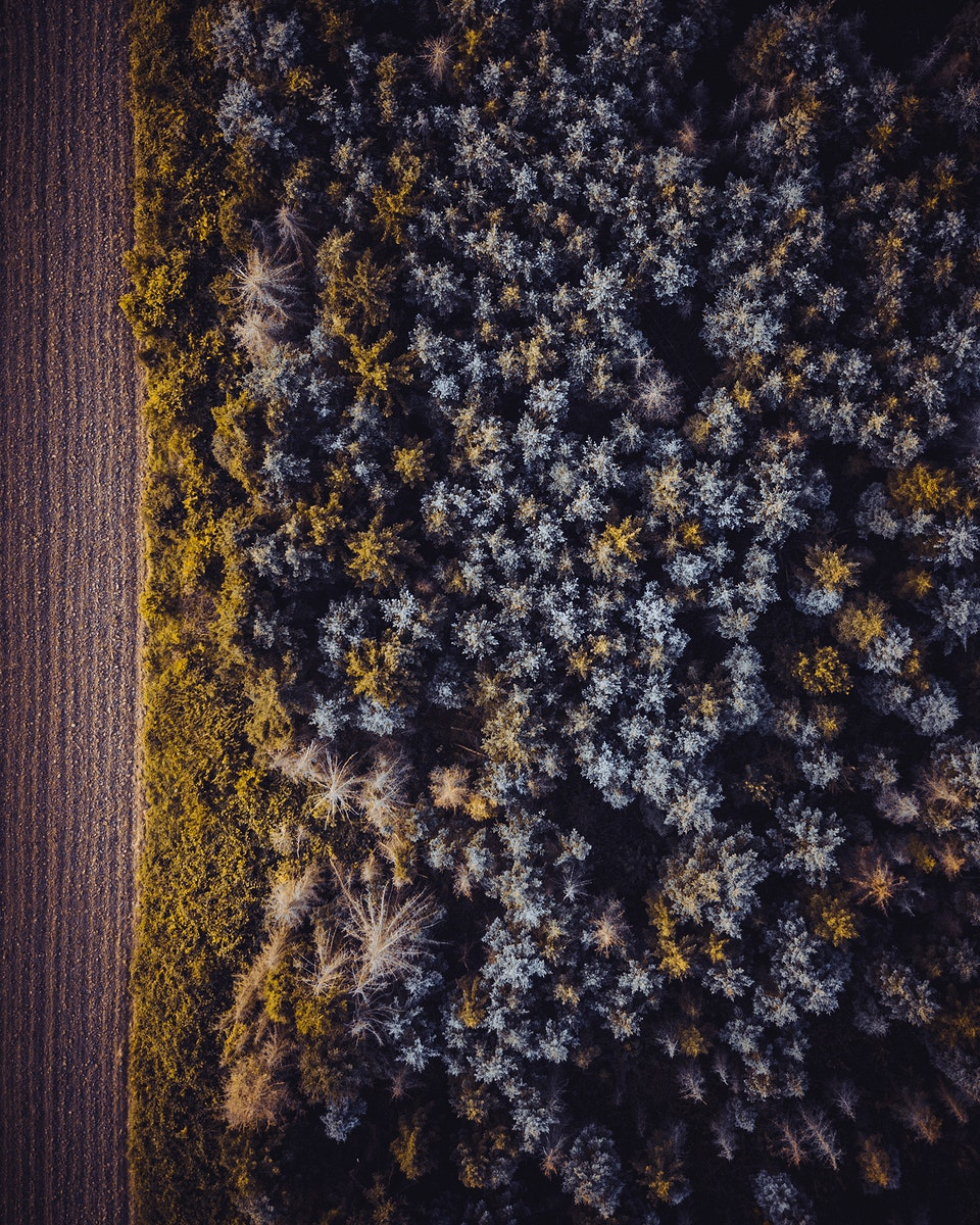 Aerial view of the forest in Vaihingen an der Enz, Germany