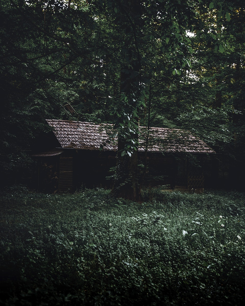 Abandoned house in Naturpark Stromberg-Heuchelberg, Germany