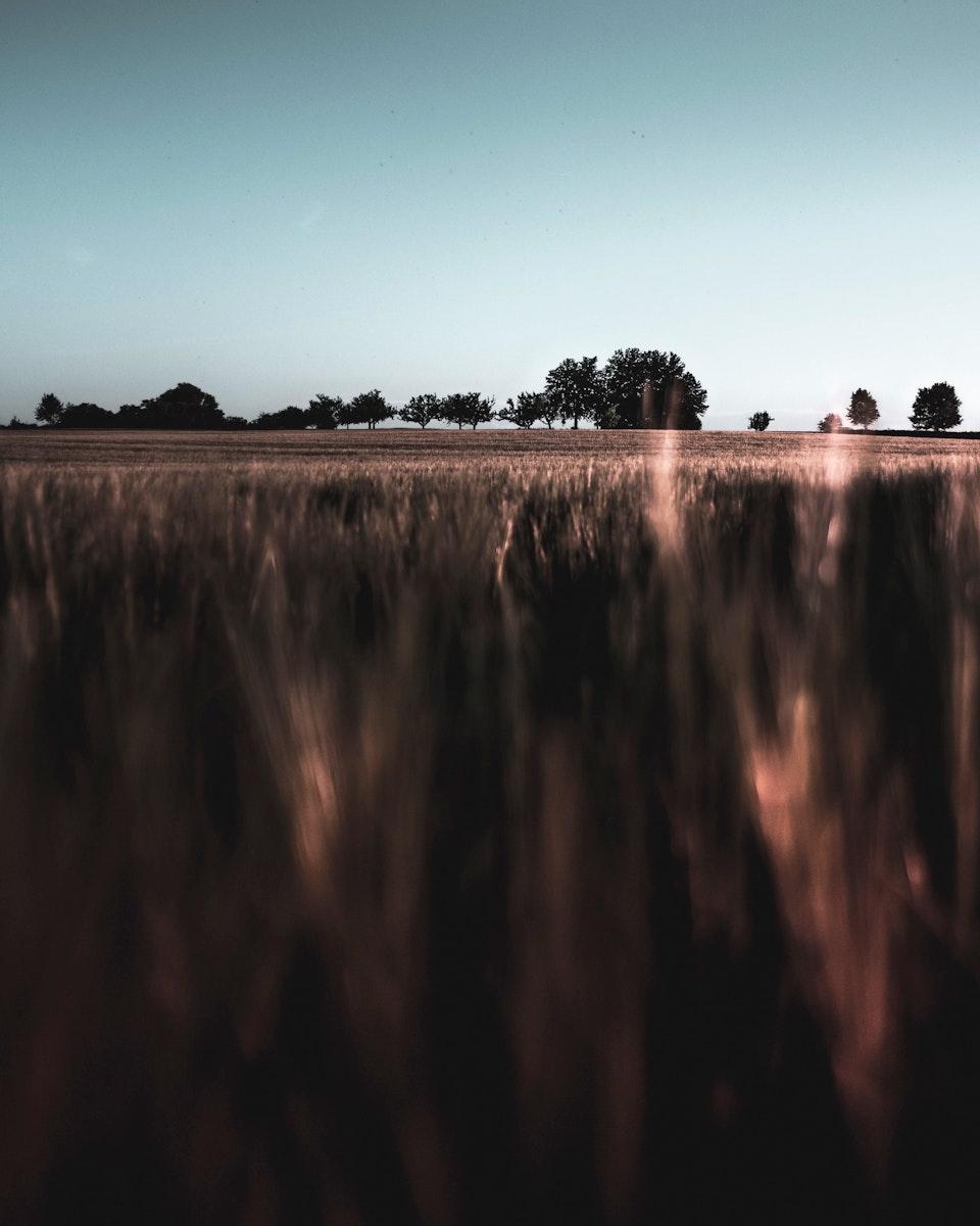 Fields in Vaihingen an der Enz, Germany