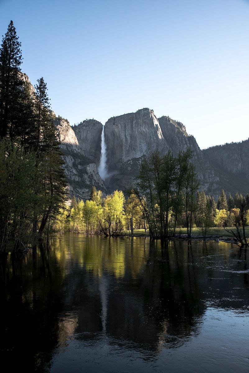 Nature at Yosemite National Park, United States