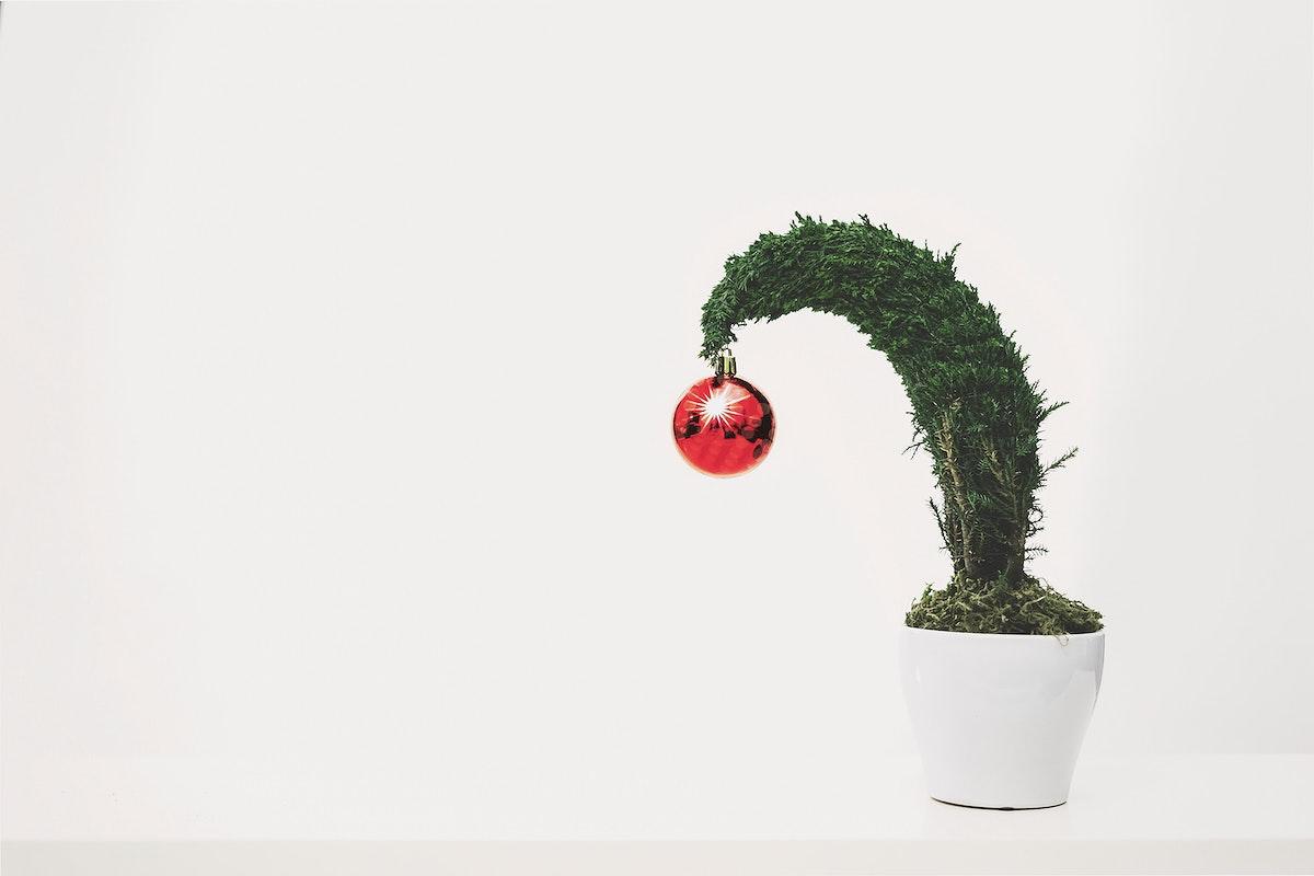 Christmas bauble on a tiny tree