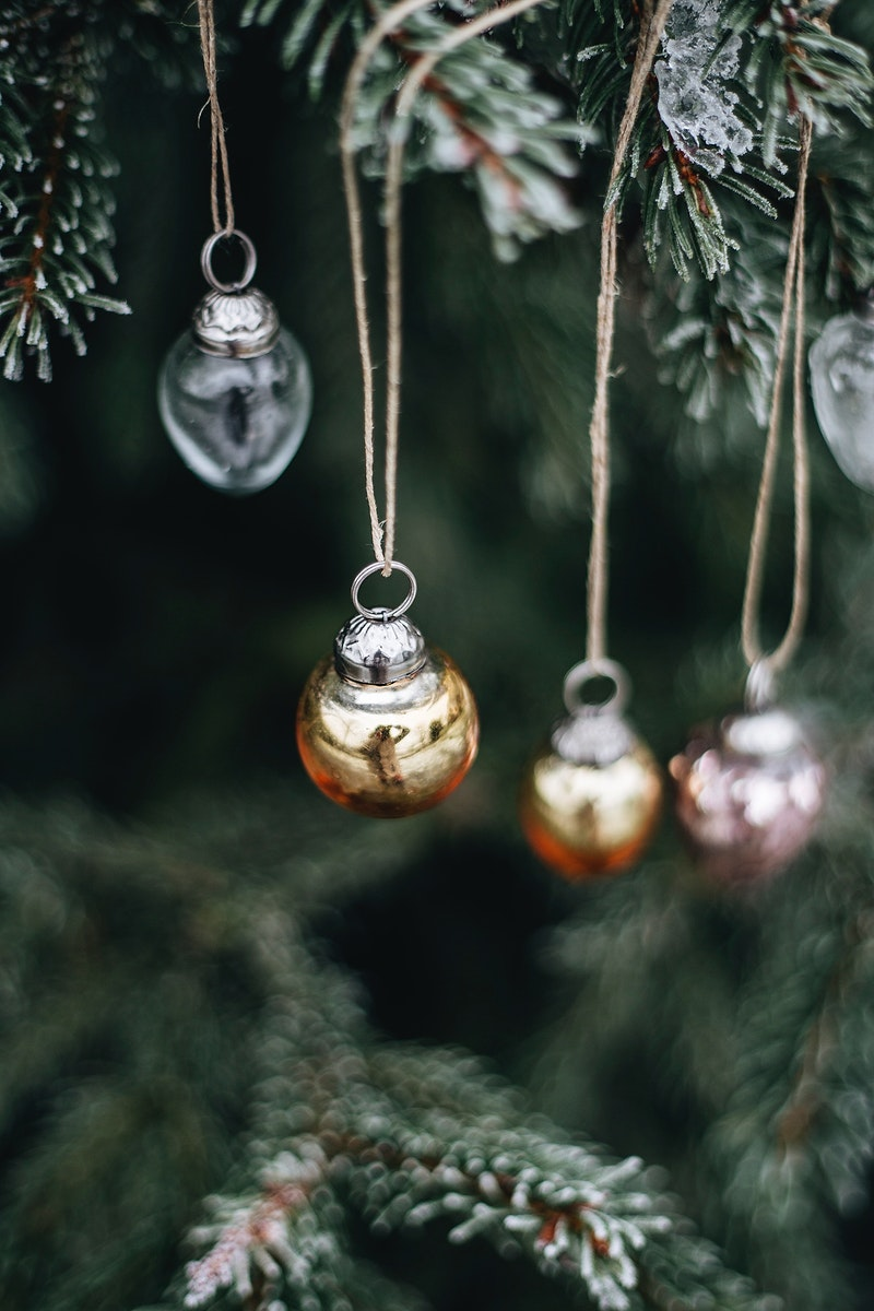 Christmas decorations hanging on a tree. Visit Kaboompics for more free images.