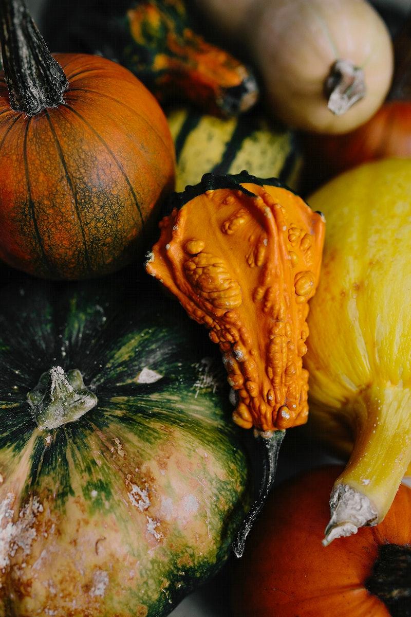 Closeup of various pumpkins. Visit Kaboompics for more free images.