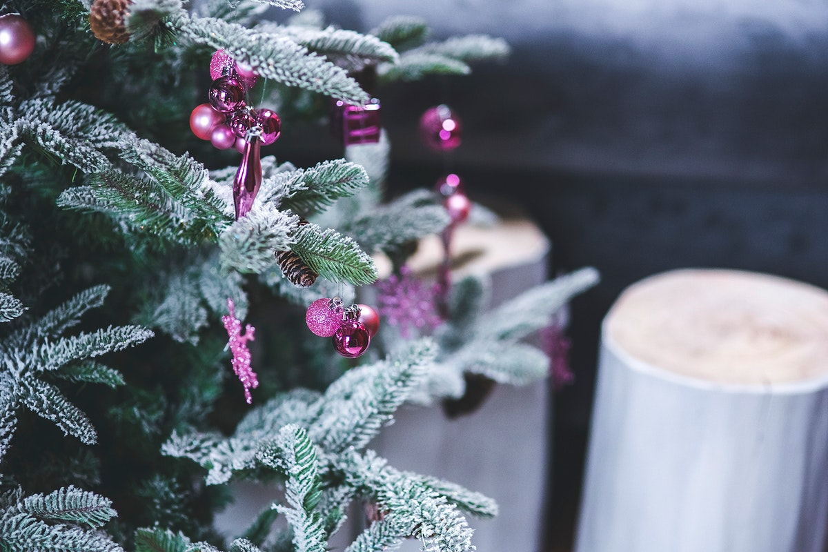 Artificial frost on a christmas tree. Visit Kaboompics for more free images.