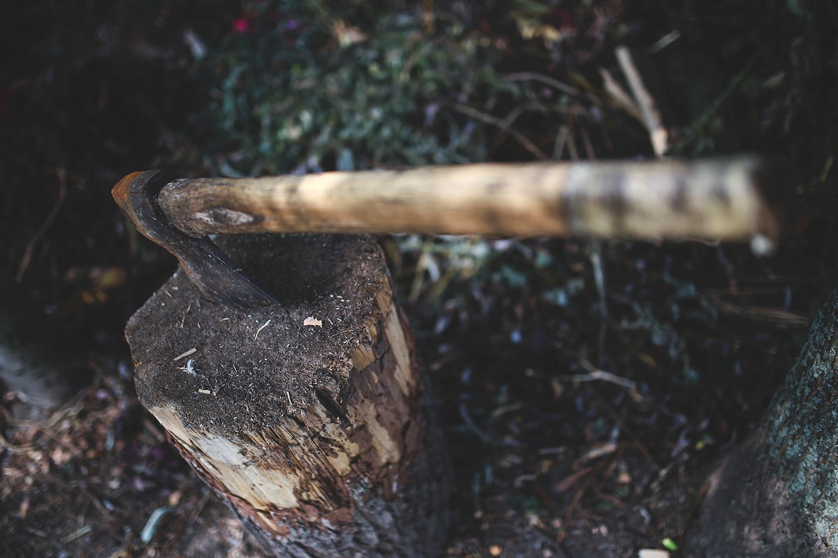 Axe and a log. Visit Kaboompics for more free images.