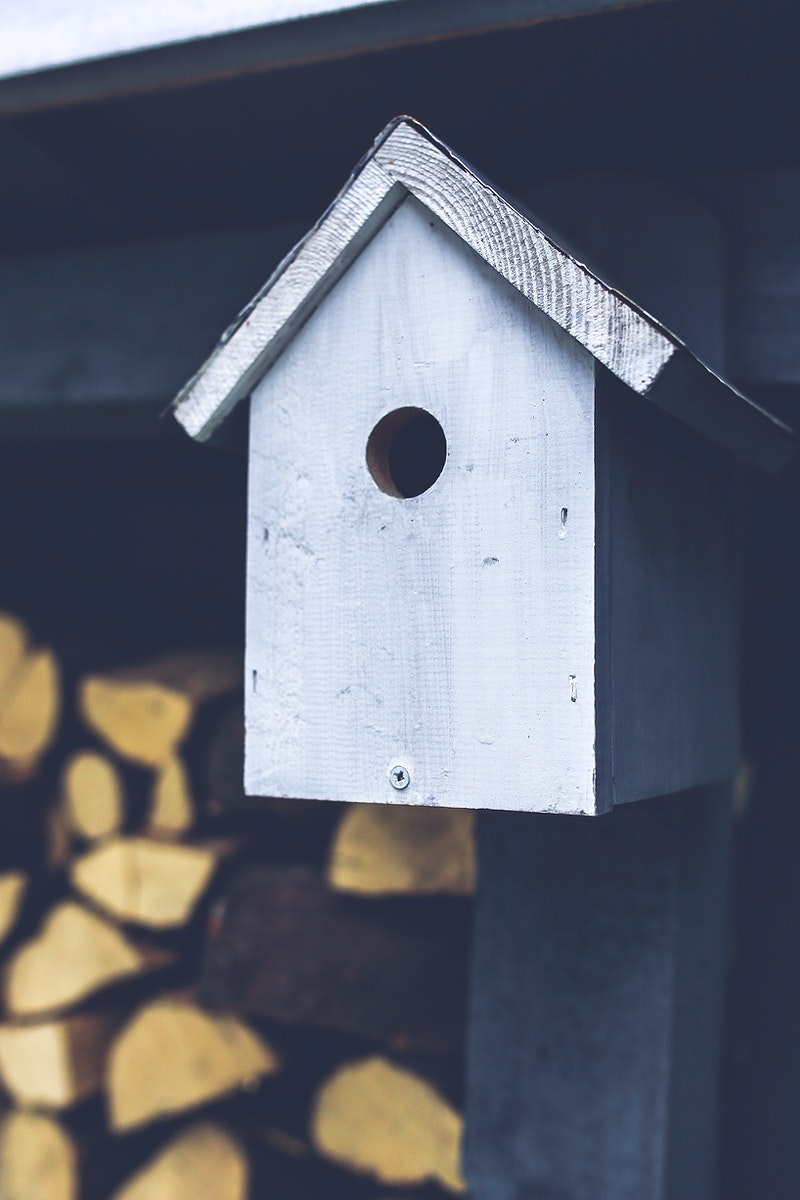 Homemade wooden birdhouse. Visit Kaboompics for more free images.