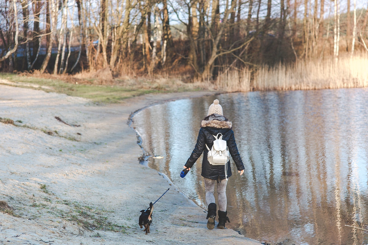 Girl walking her dog by a lake. Visit Kaboompics for more free images.