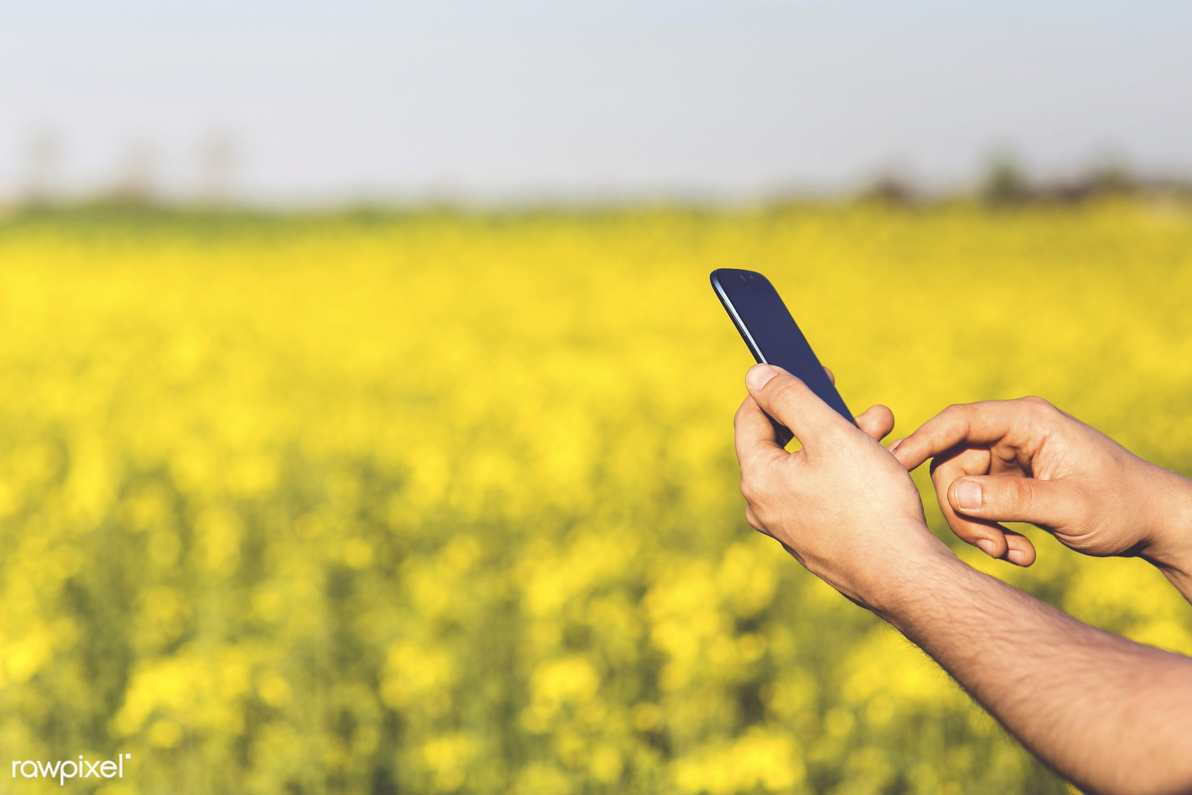 Man using a phone by a field - blank space, cc0, cellphone, communication, connection, copy space, design space, device,...