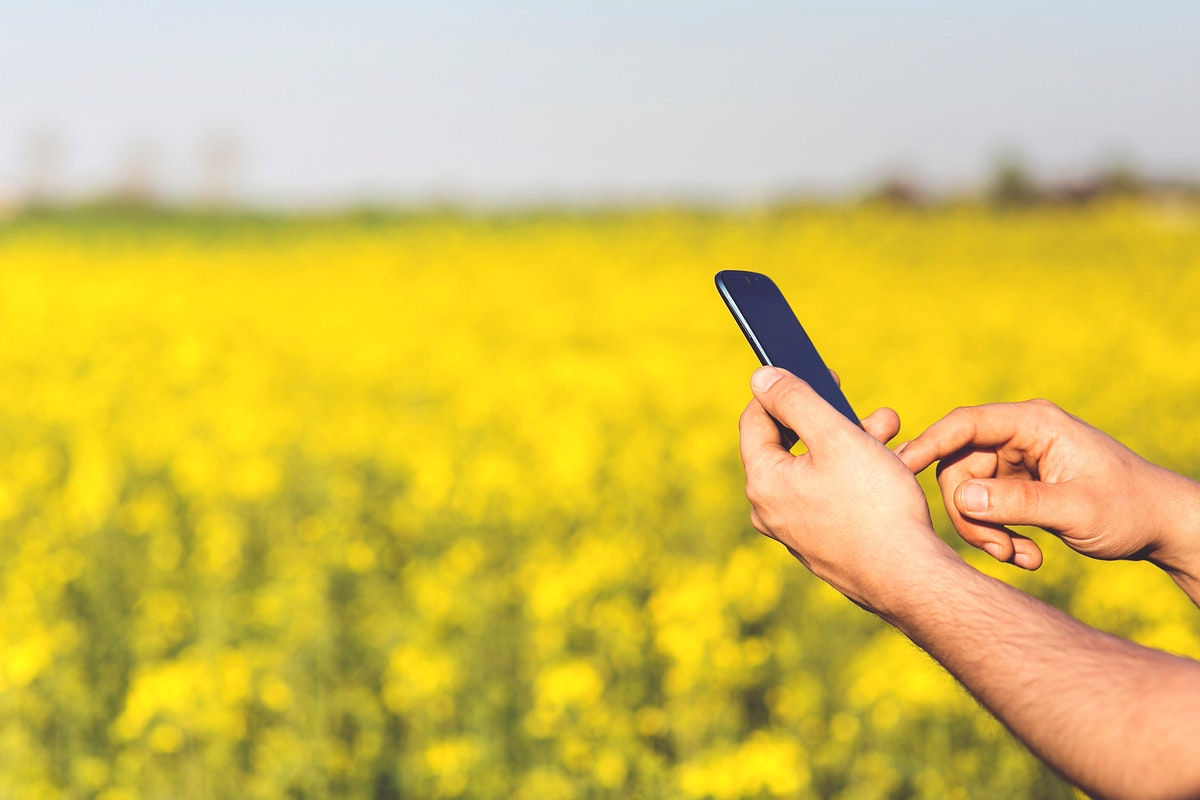 Man using a phone by a field. Visit Kaboompics for more free images.