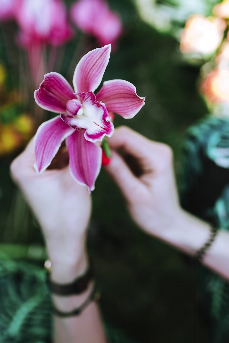 Woman holding an orchid. Visit Kaboompics for more free images.