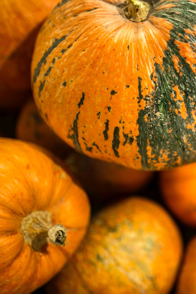 Pumpkins for Halloween. Visit Kaboompics for more free images.