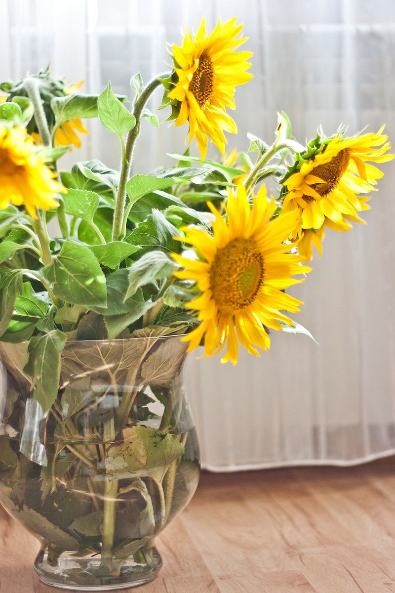 Beautiful sunflowers in a vase. Visit Kaboompics for more free images.