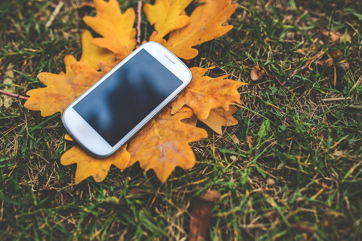 Smartphone in the autumn. Visit Kaboompics for more free images.