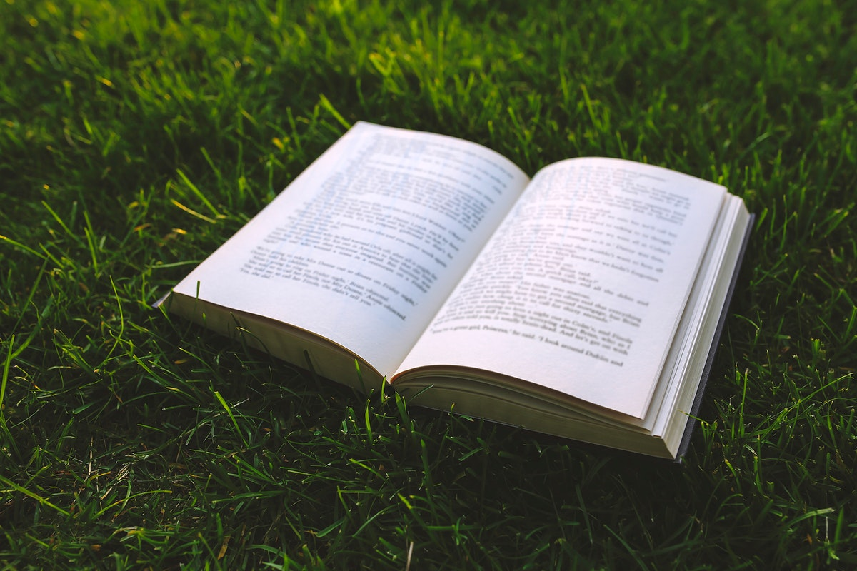 Reading a book in the summertime. Visit Kaboompics for more free images.