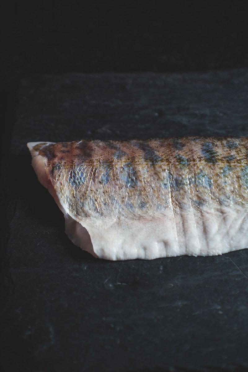 Close up of a fish fillet