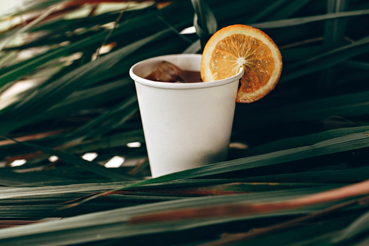 Cold drink in a paper cup