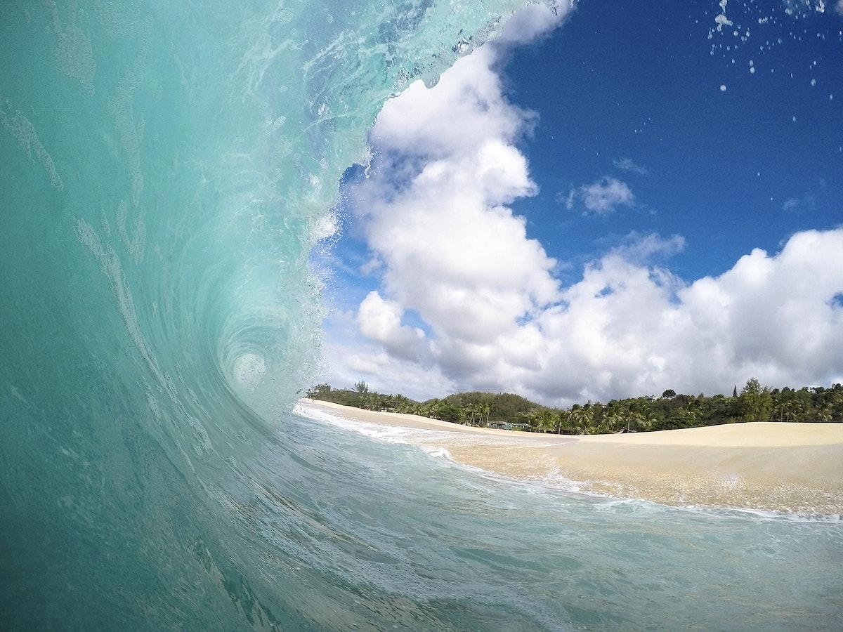 Wave in Haleiwa, Hawaii