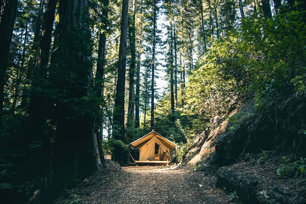 Camping house in the Redwoods of Big Sur, California