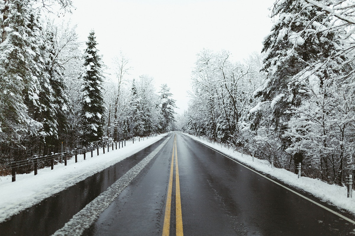 A road in a winter forest
