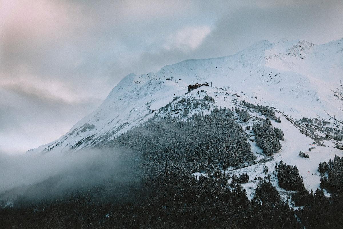Snowy girdwood mountain alaska views in winter