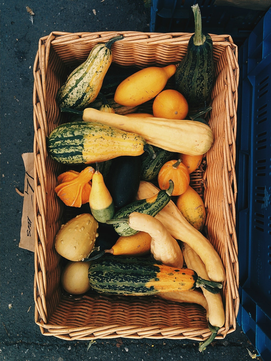 Variety of pumpkins for decoration