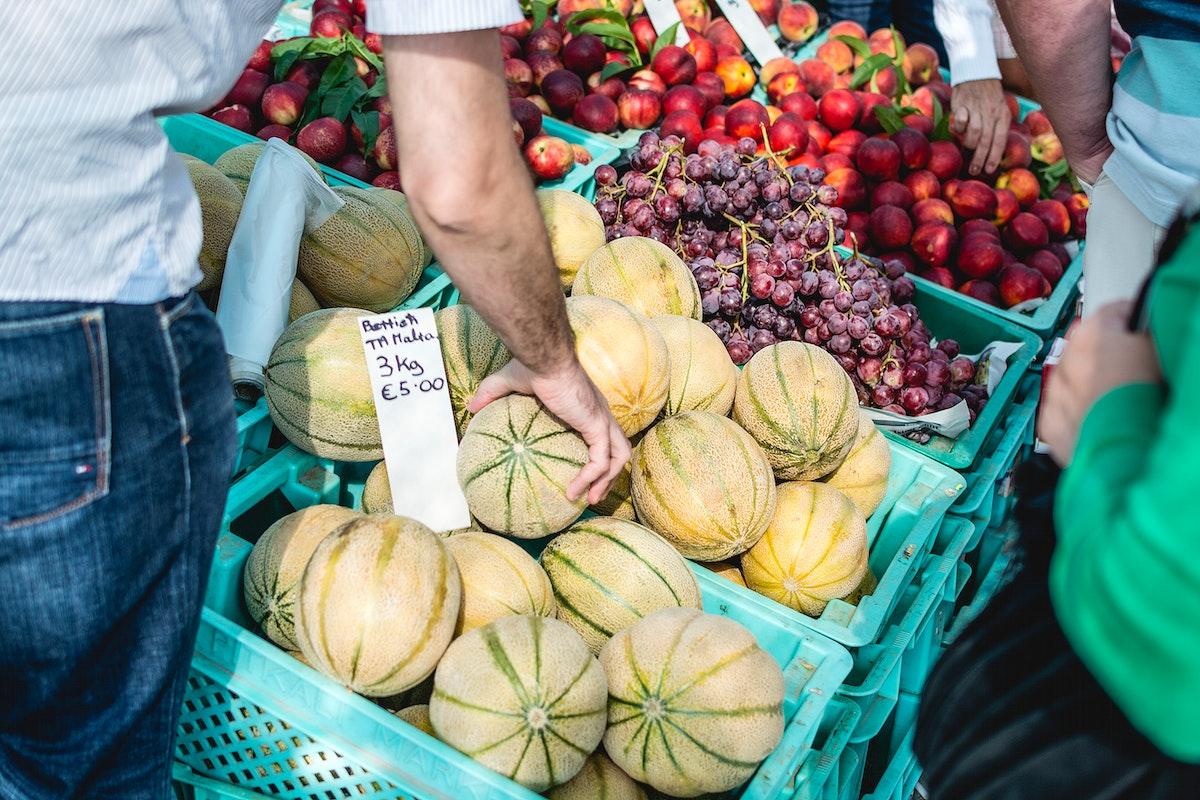 Vegetables on sale at a market
