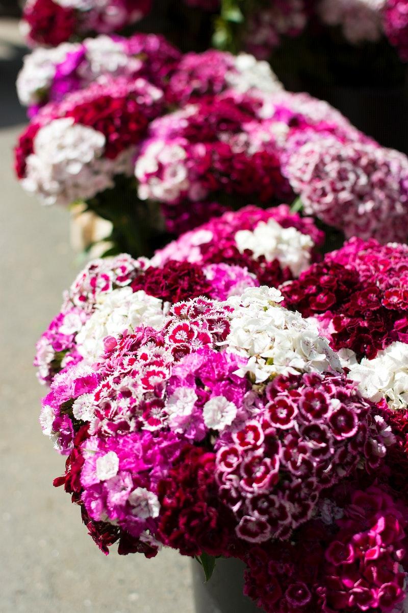 Bunch of fresh flowers in a market