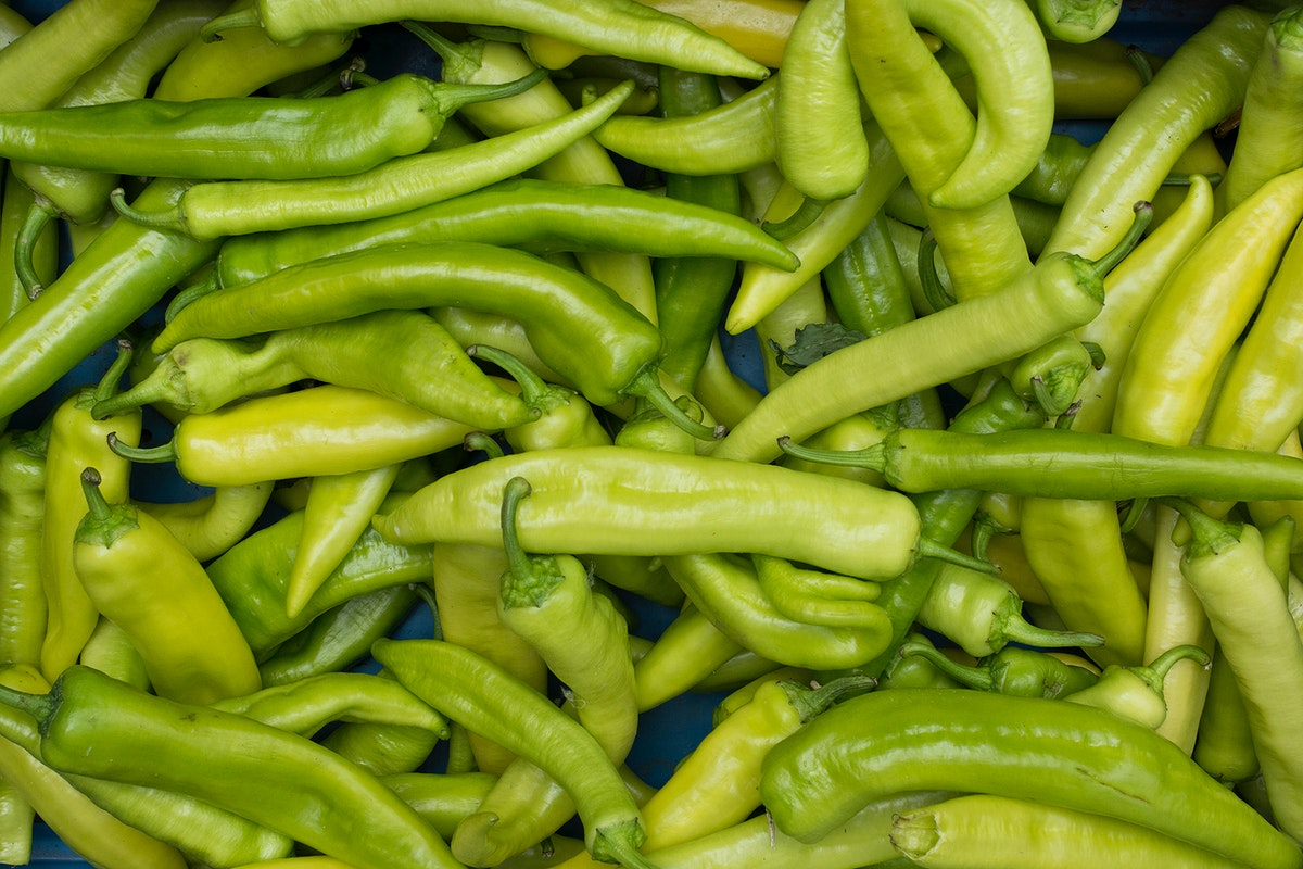 Closeup of broad green chilies