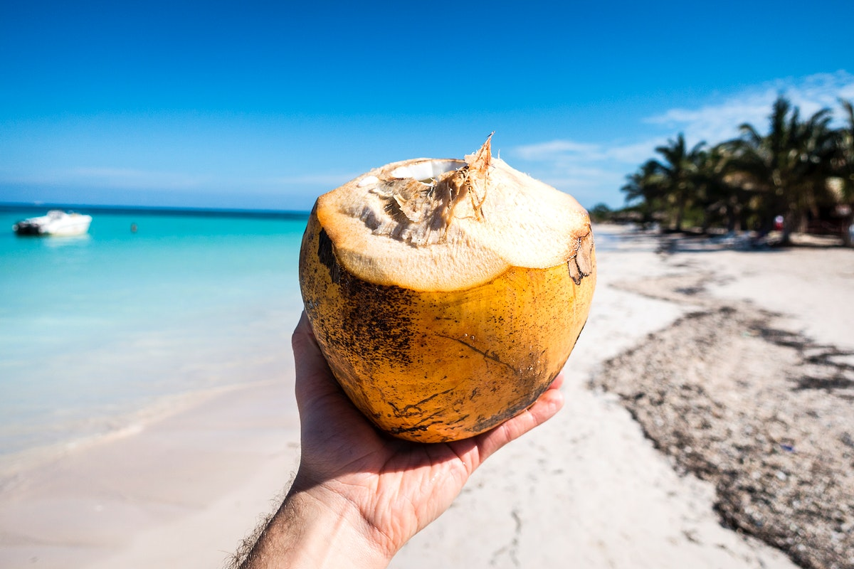 Hand holding a coconut by the beach