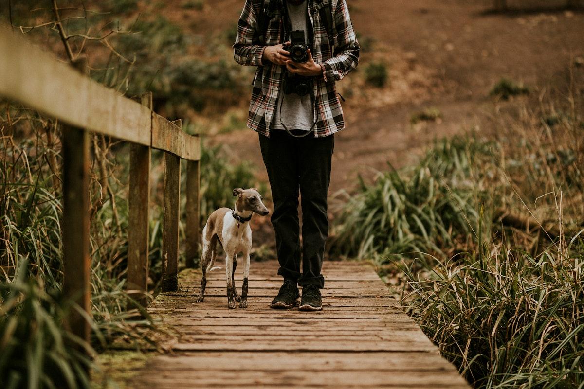 Man walking his dog in the wild