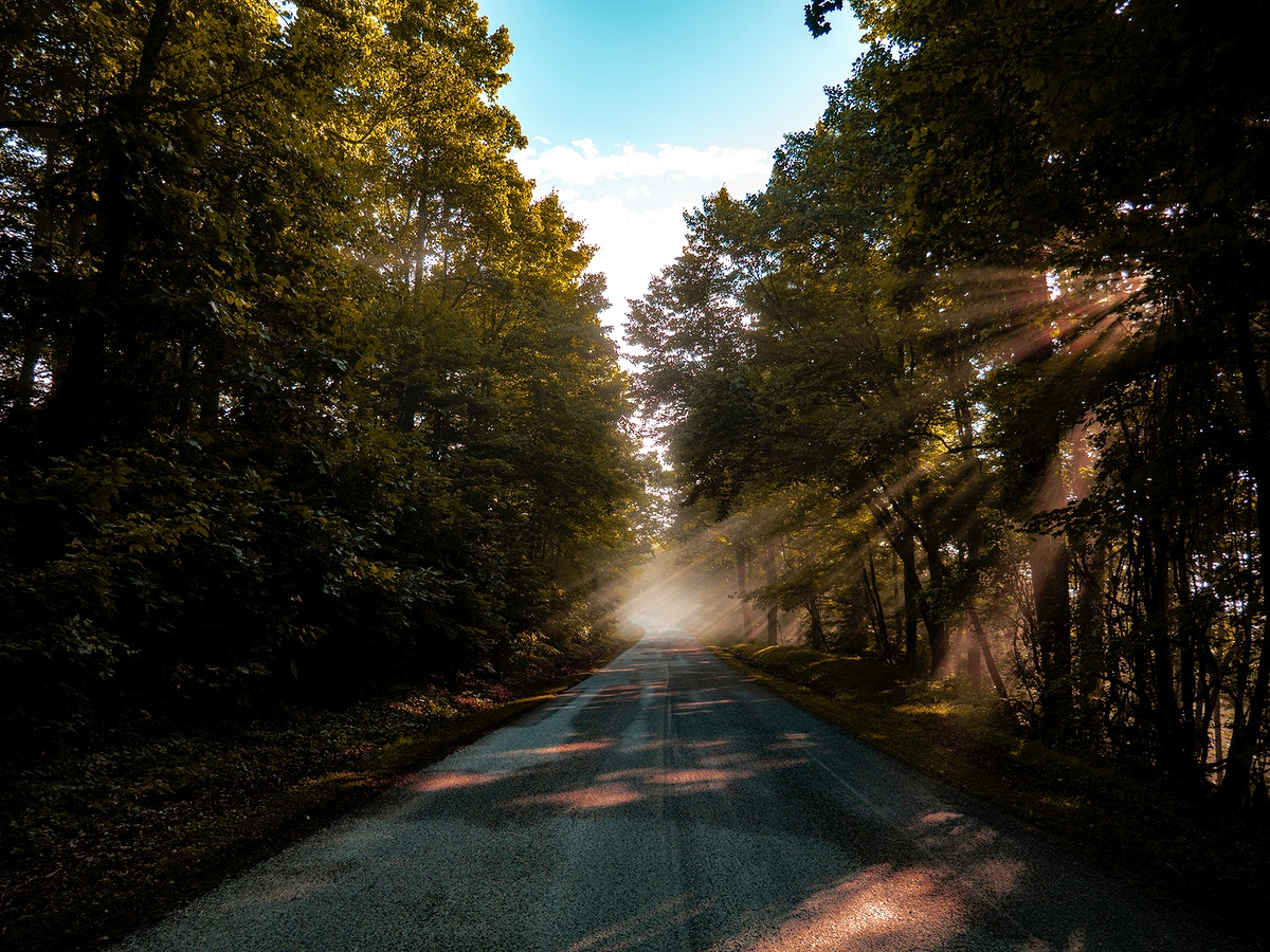 View of Blue Ridge Parkway with sunlight