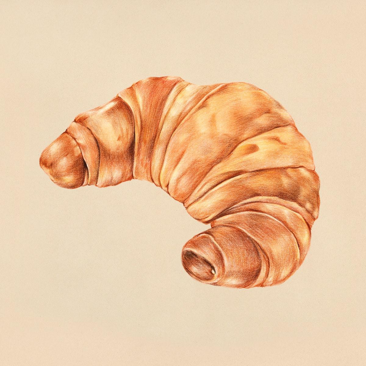 Freshly baked croissant hand-drawn illustration