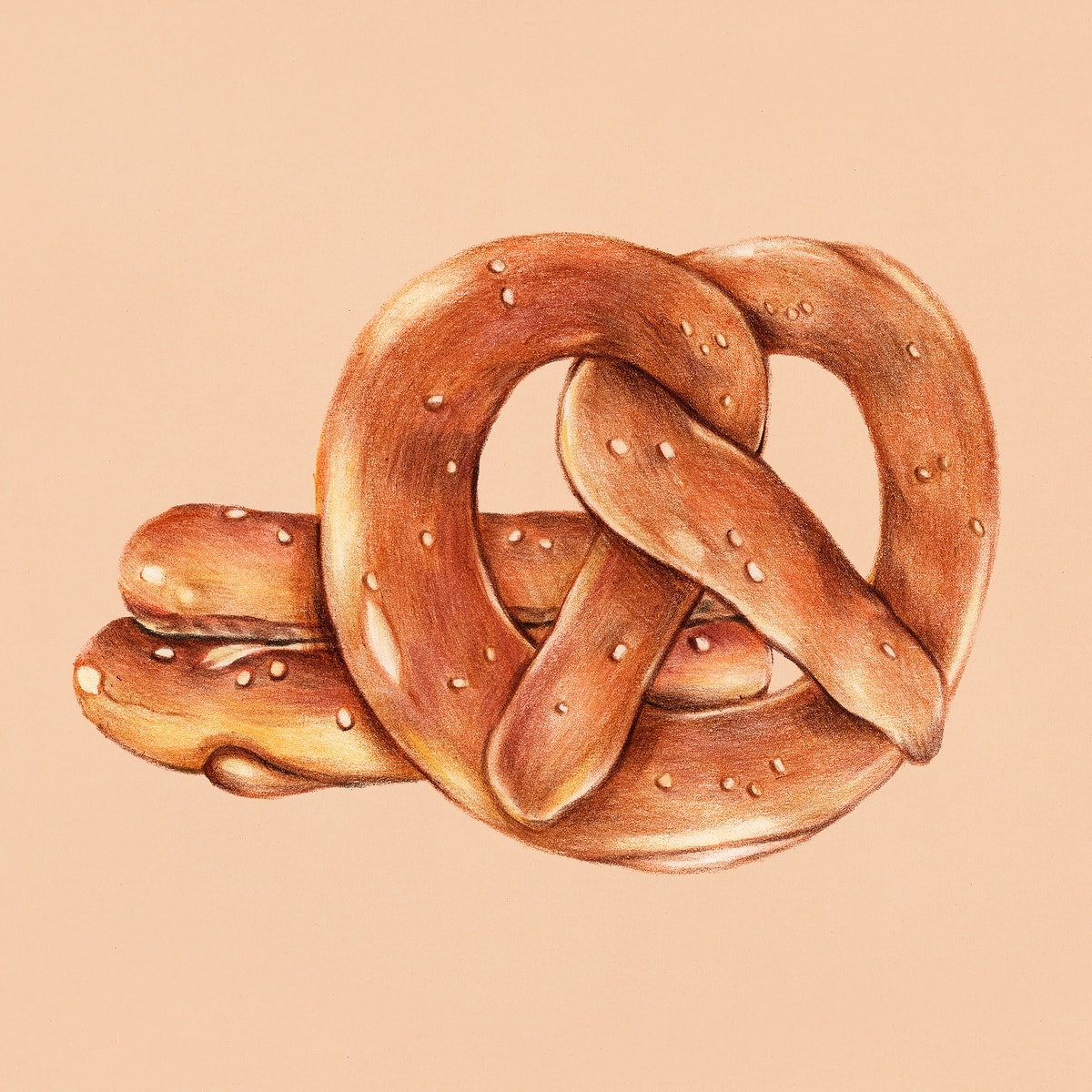 Freshly baked pretzels hand-drawn illustration