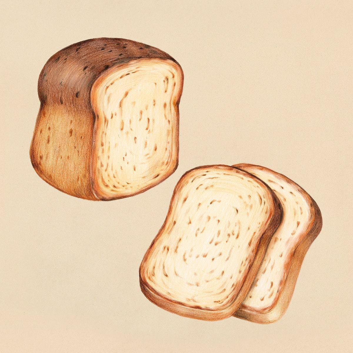 Freshly baked bread hand-drawn illustration
