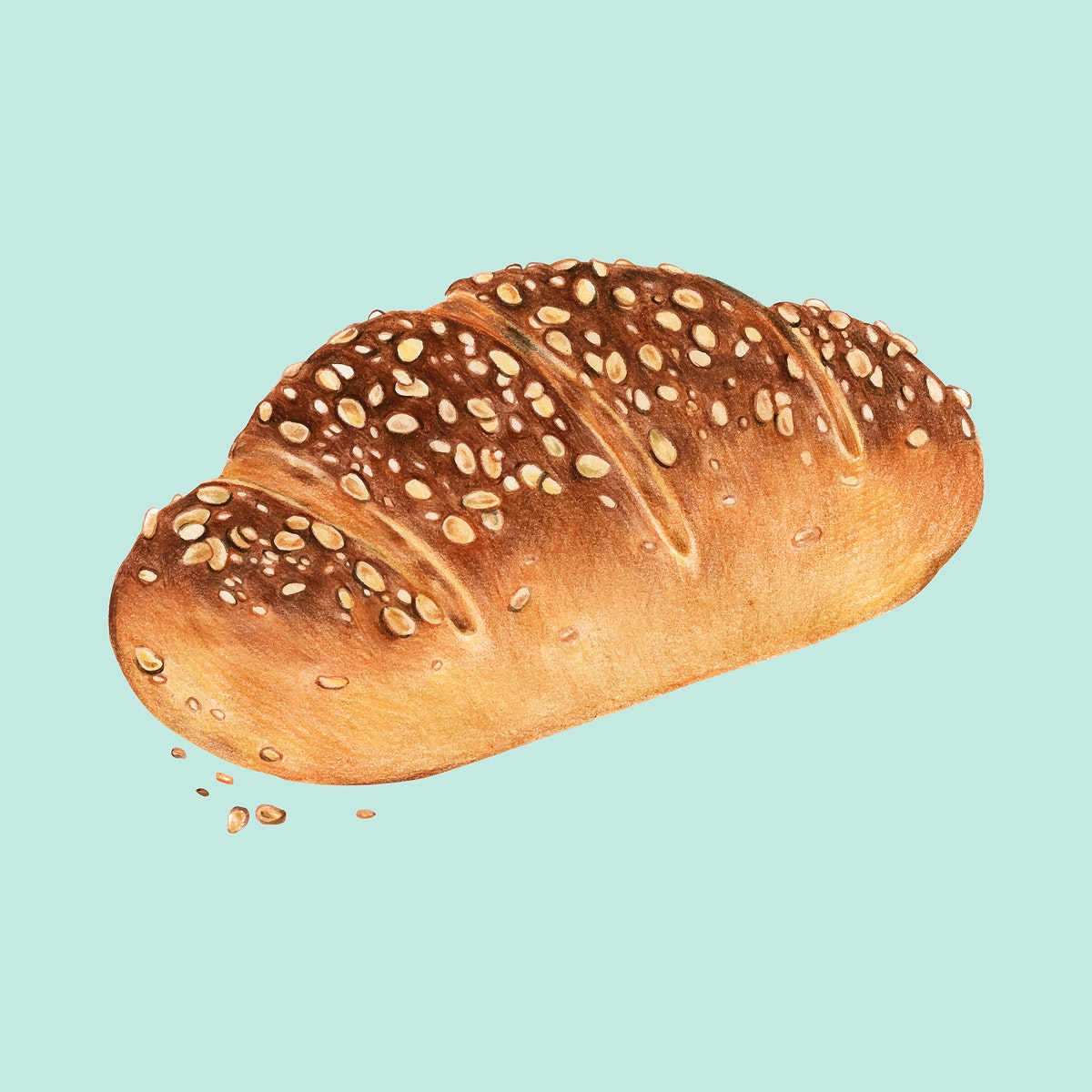 Freshly baked multigrain bread hand-drawn illustration