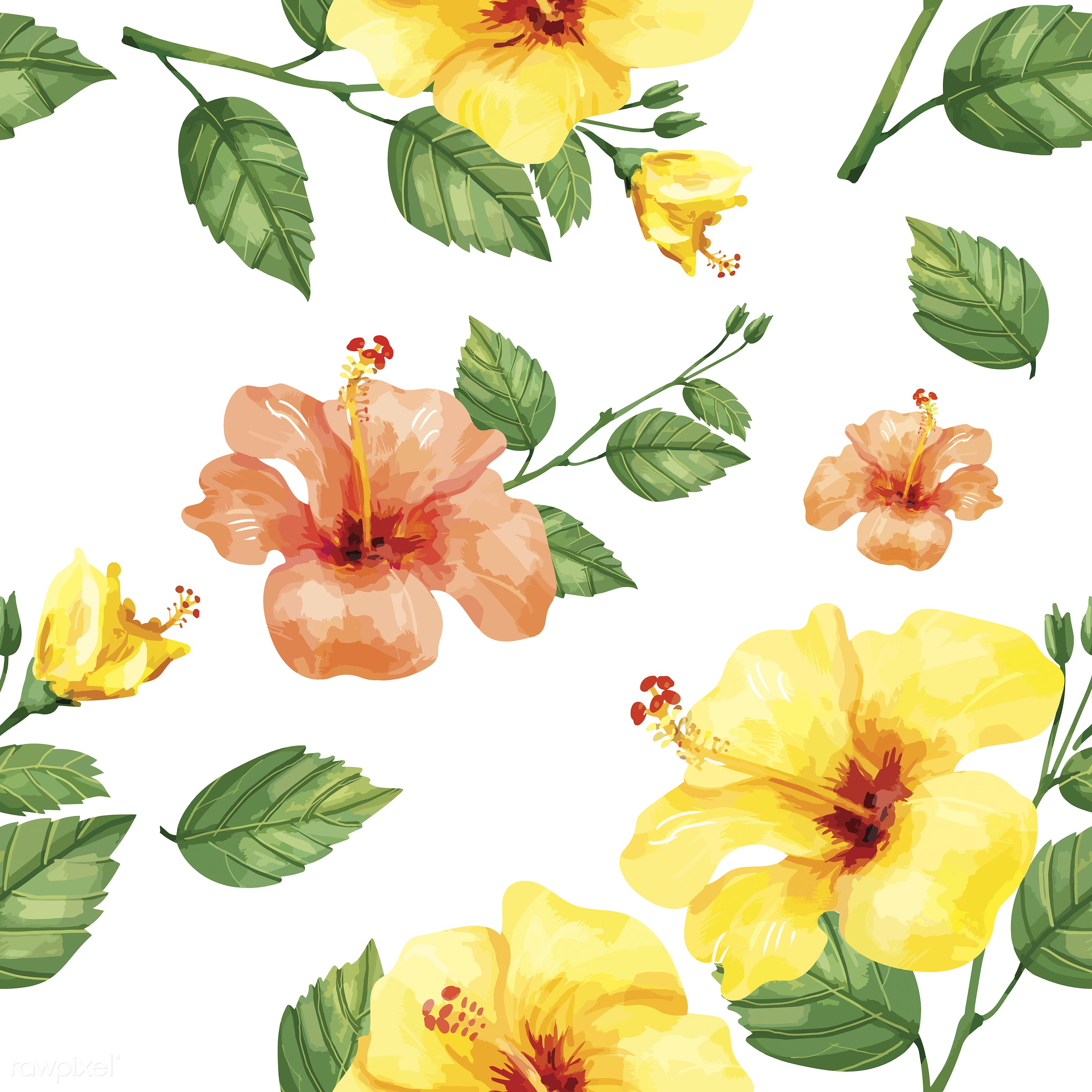 Hand Drawn Hibiscus Flowers Print Id 421676