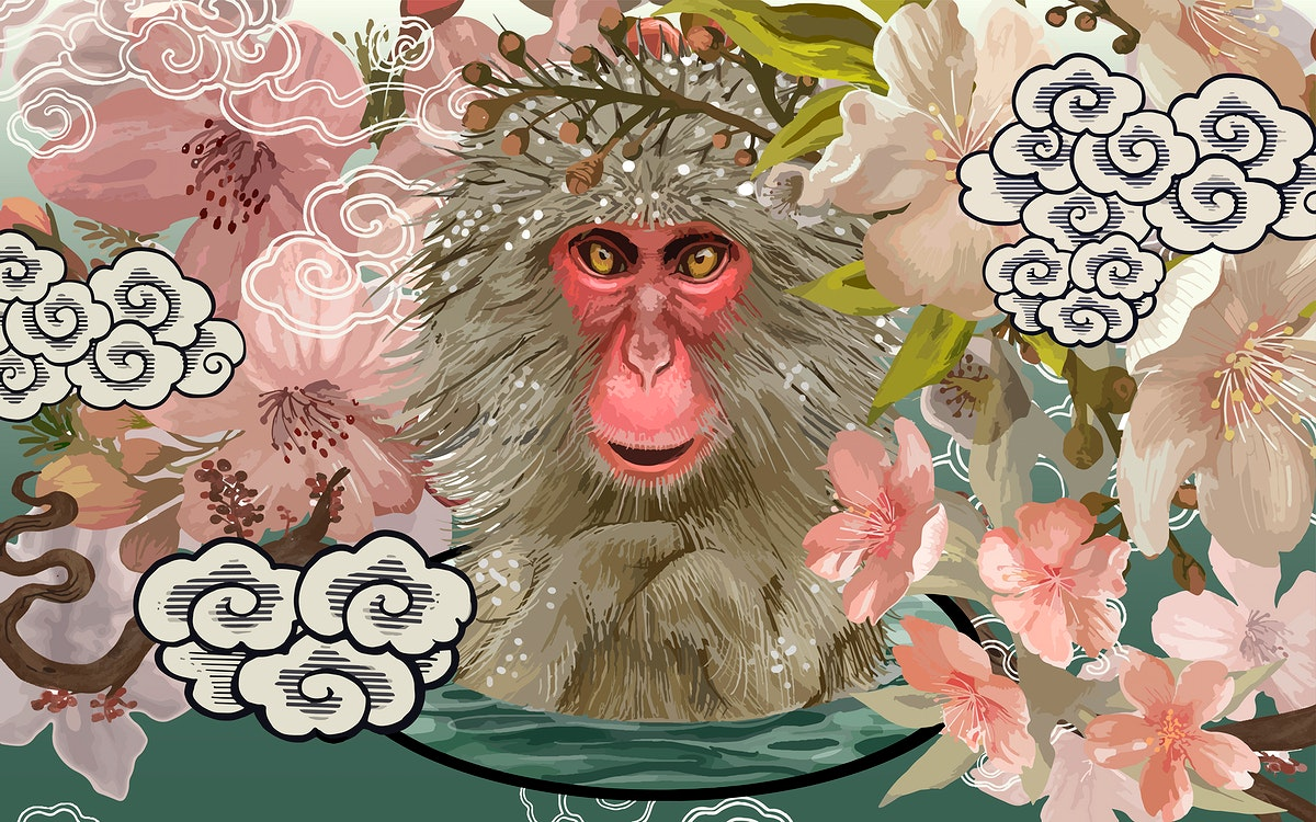 Japanese macaques in an Onsen amid cherry blossom illustration