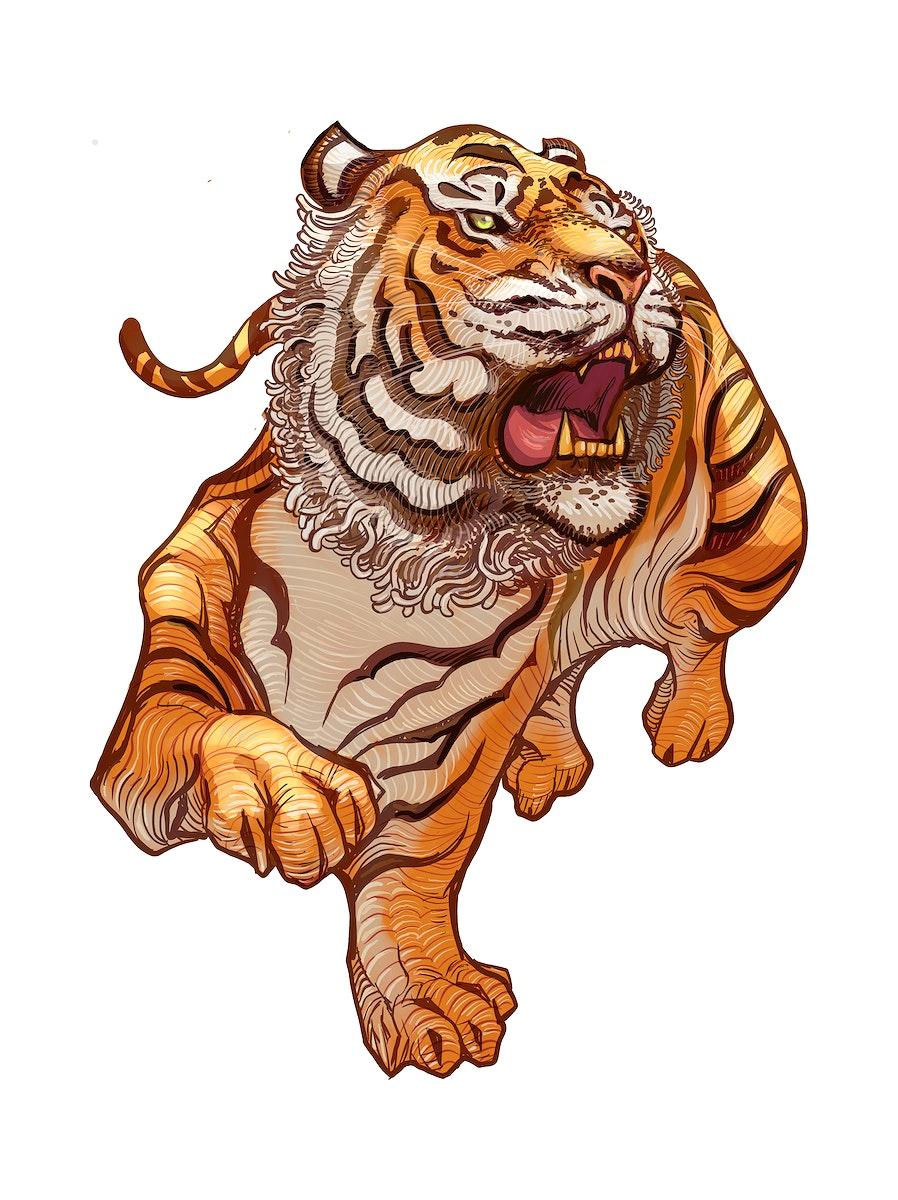 Roaring Japanese tiger hand-drawn illustration
