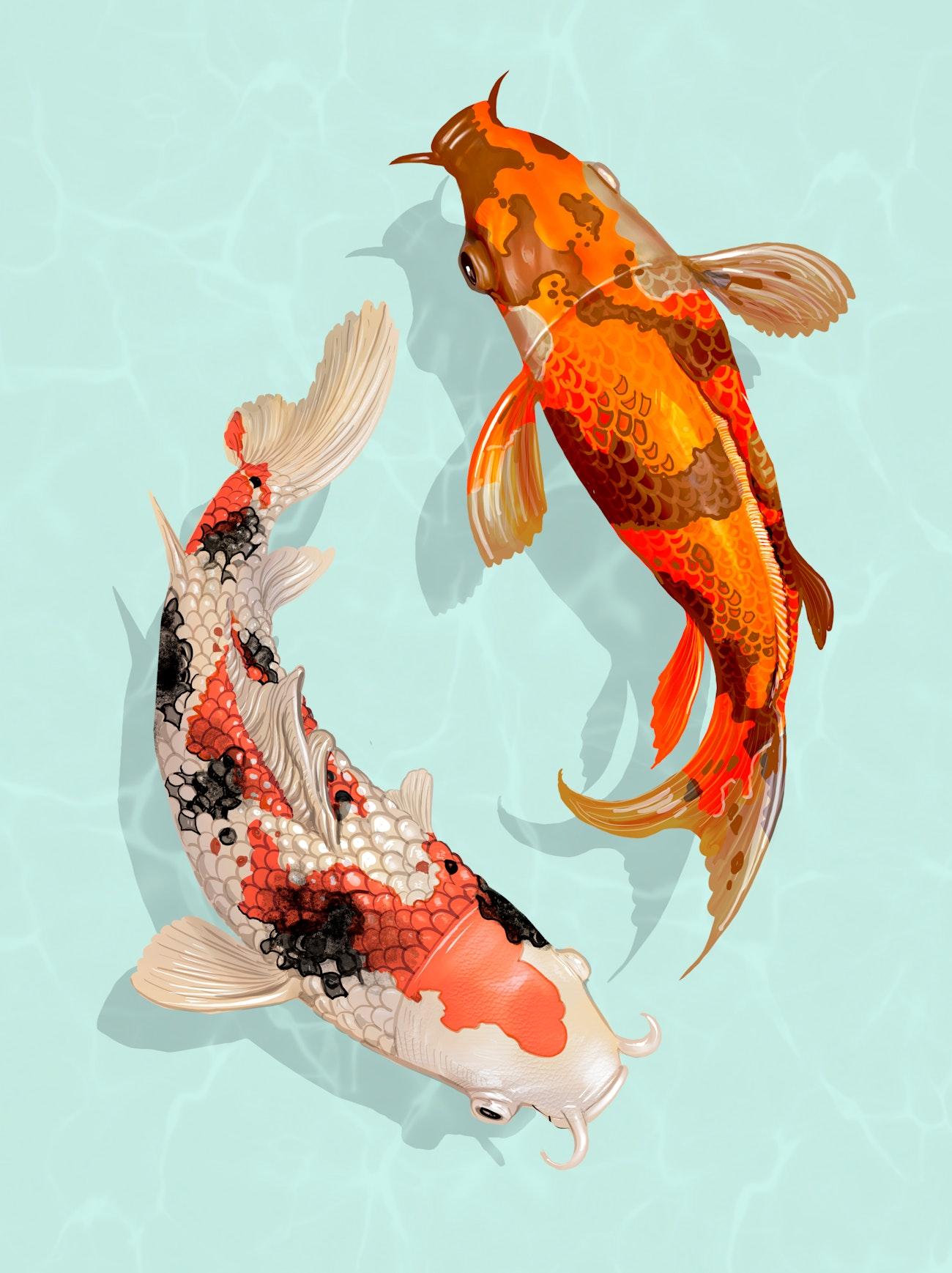 Two Japanese Koi Fish Swimming Royalty Free Illustration 449871
