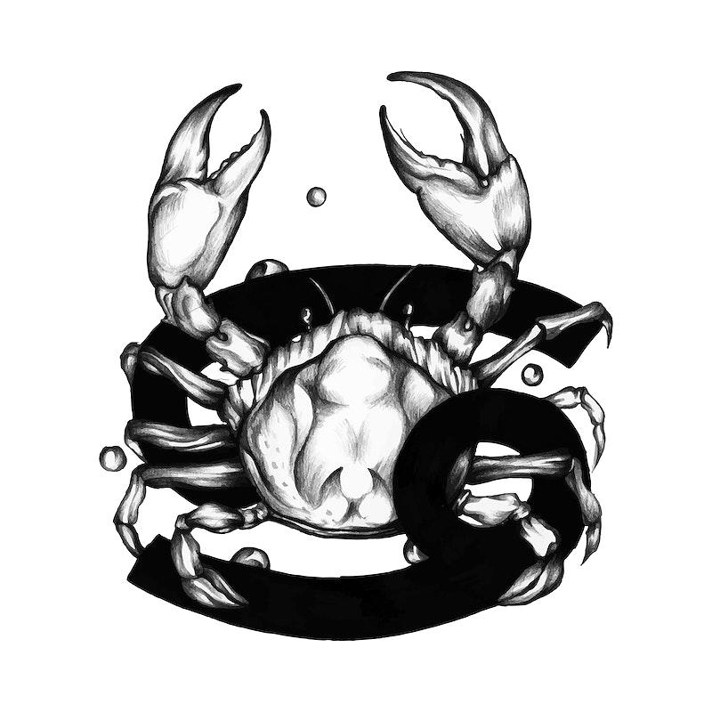 Hand Drawn Horoscope Symbol Of Cancer Illustration Id 521066