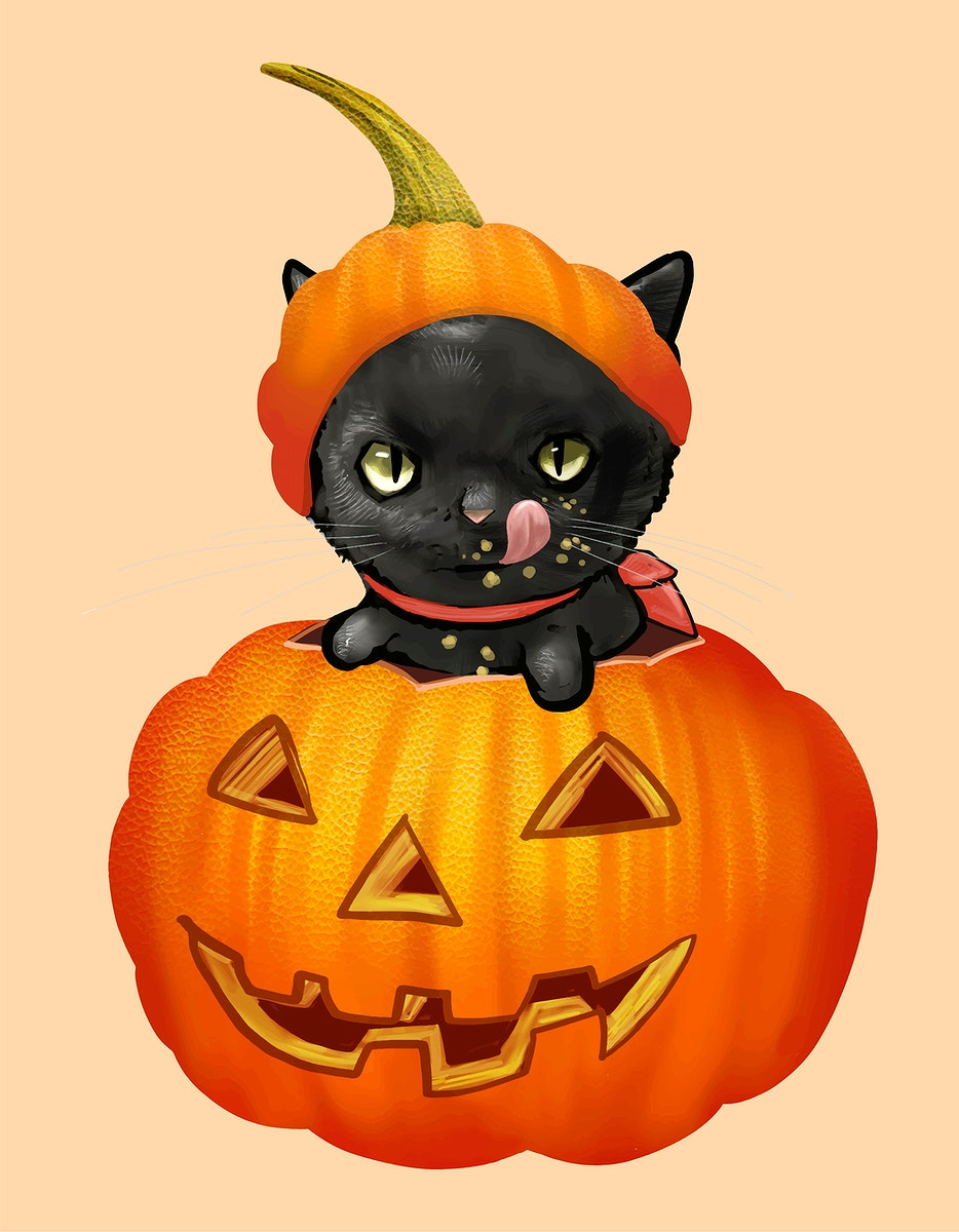 Illustration of a black cat in pumpkin icon vector for Halloween
