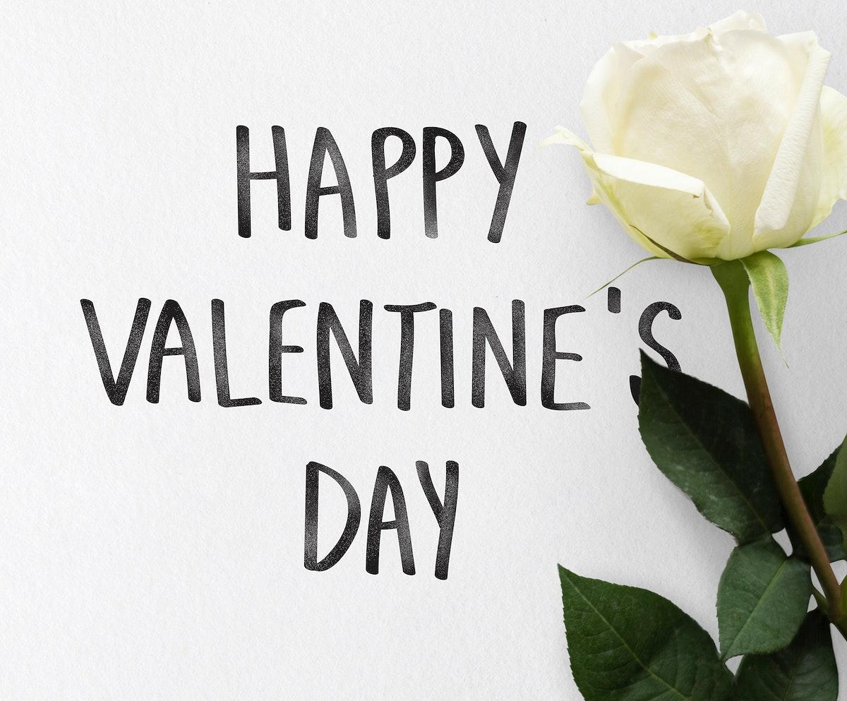 Happy Valentine's day themed white rose